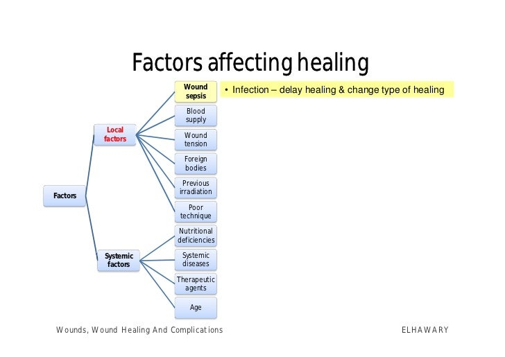 nutrition and wound healing pdf